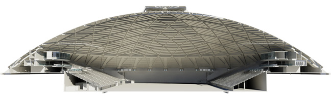 skydome project