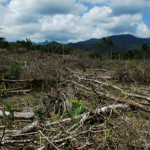 Deforestation in Honduras.