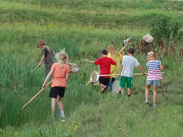Children participate in summer bug camp 2013.