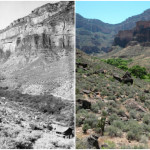 A historical and modern view of Indians Gardens in the Grand Canyon.