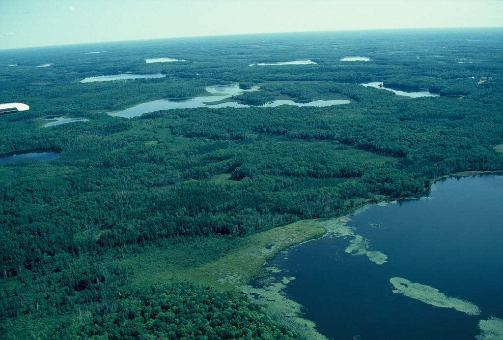Aerial view of Minnesota peatlands