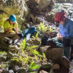 NAU researchers explore Rapa Nui caves