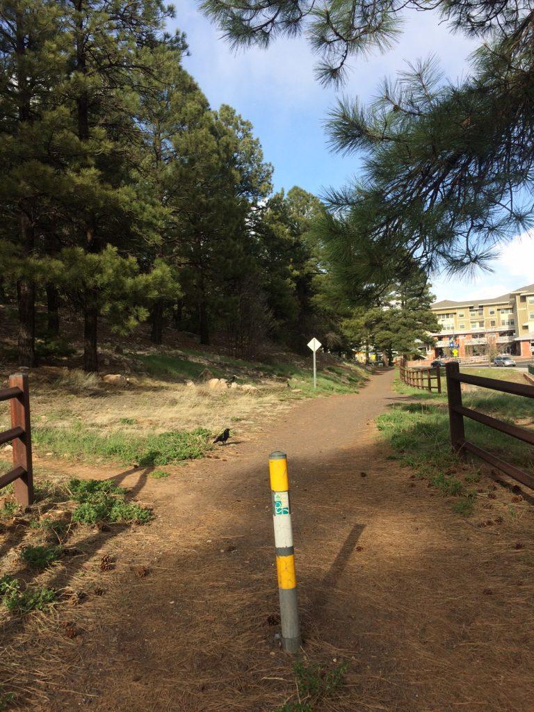 NAU trail