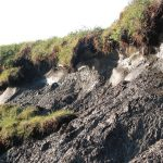 Thawing of Arctic cryosphere