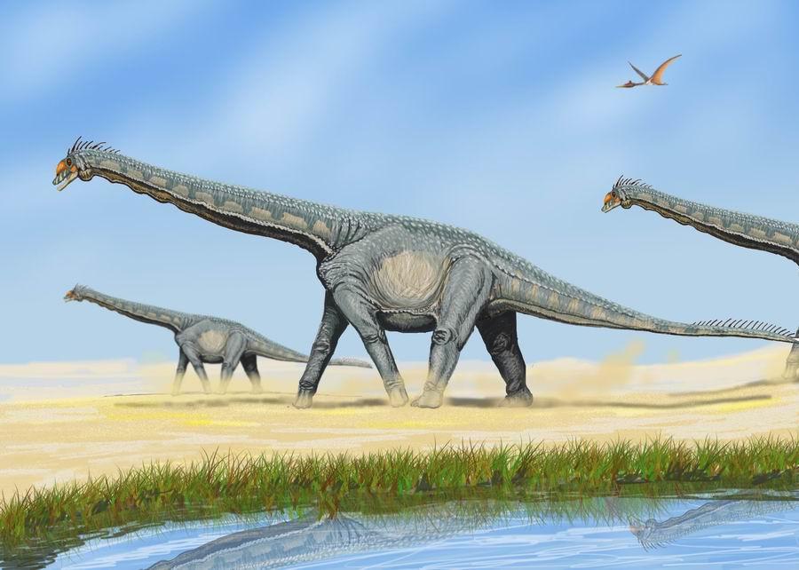 Alamosaurus Dinosaur
