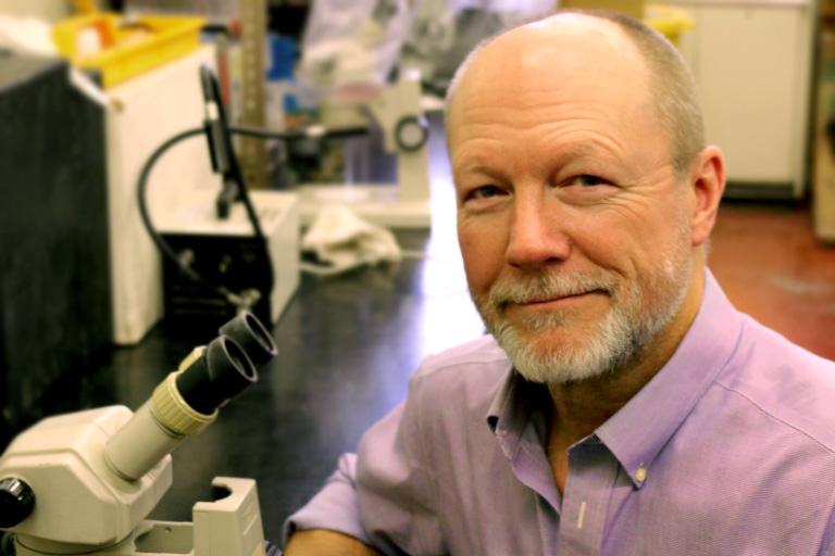 Stephen M. Shuster