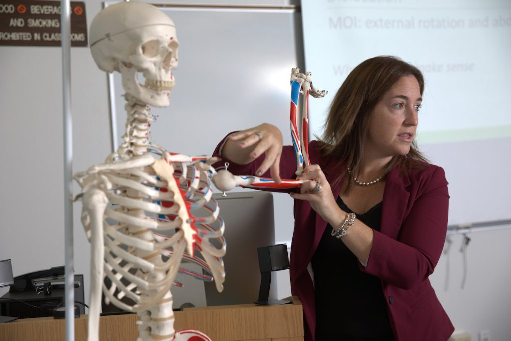 Athletic training professor teaching with skeleton
