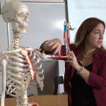 Athletic training professor teaching with skeleton