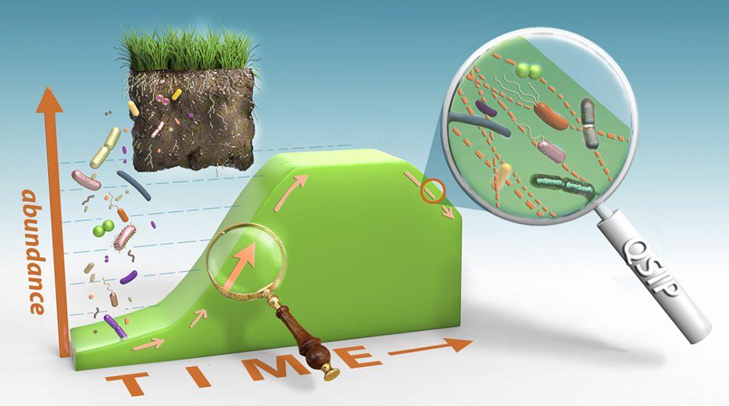 growth of microbial taxa