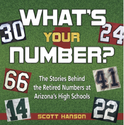 """What's Your Number"" book cover"