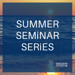 Summer Seminar Series logo placed over image of beach