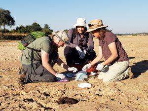 Zambia research project