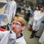 NAU geneticist awarded $500,000 USDA grant to prevent tick-borne cattle fever
