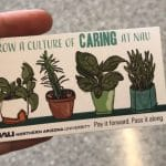 Everyday Valentines: NAU's Health Promotions spreads smiles across campus with kindness campaign
