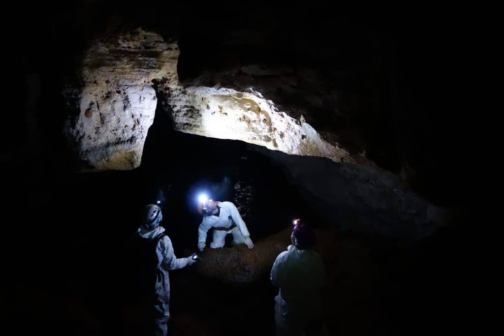 Researchers in bat cave
