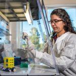 Flinn Foundation funds NAU microbiologist's study to address health disparities through novel therapeutic for asthma