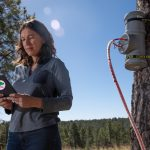 Taking Flux Puppy for a walk: NAU undergraduate research team develops ecological app for measuring carbon dioxide