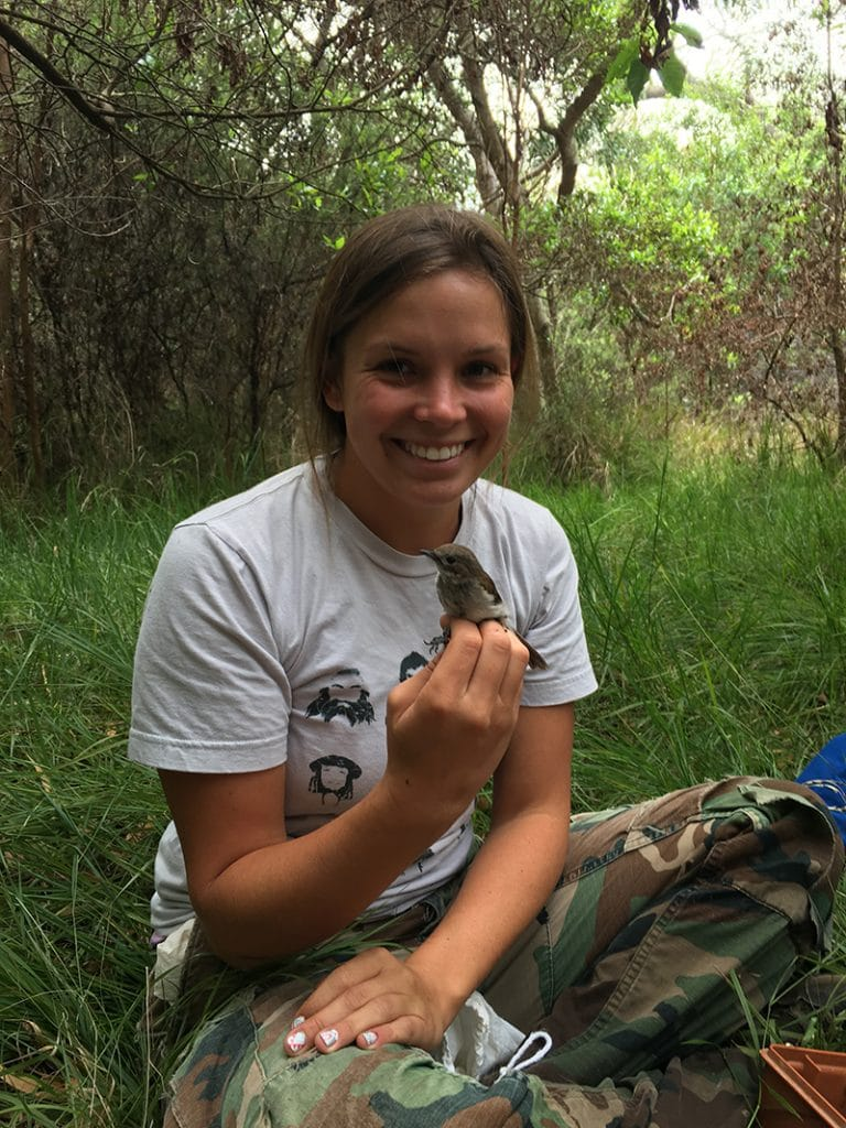 Kelly Jaenecke holds an 'elepaio, a small native Hawaiian bird, while doing field work.