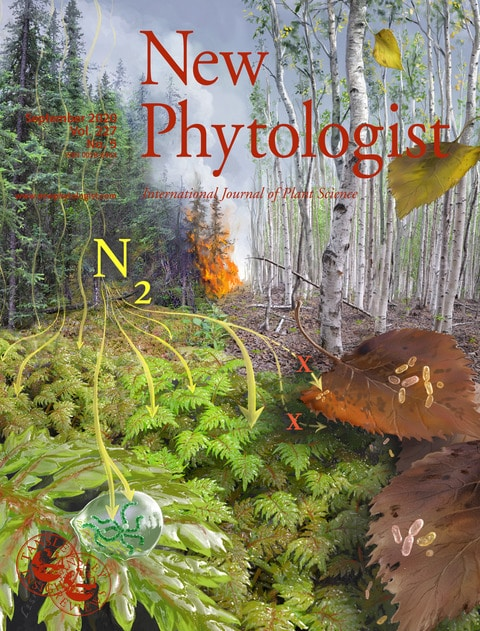 New Phytologist cover