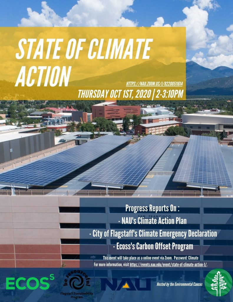 State of Climate Action flyer