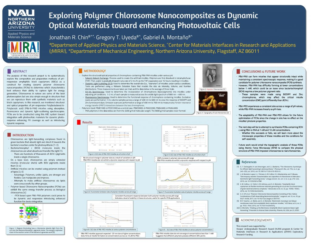 Chin's research poster